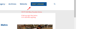 blog blue button