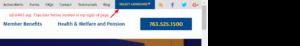 website blue button